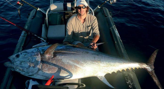 Appât surgelé pour la pêche