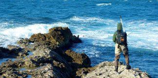 Choix de la bagagerie pour la pêche en mer