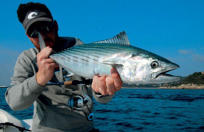 Choix des lunettes polarisantes pour la pêche en mer
