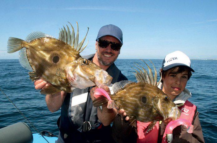 Pêche du Saint Pierre au leurre Black Minnow