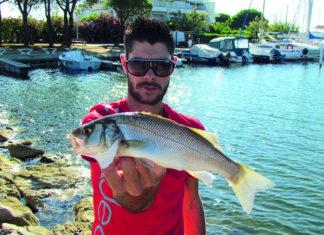 Pêche à la bolognaise en mer